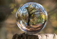 Încotro mergi? Peisaj, pădure, glob cristal