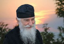 Gheron Nikon de la Nea Skiti. Sfântul Munte Athos.