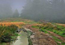 Profeție pentru creștinii din vremurile din urmă, peisaj, ceață, mister, sfârșitul lumii