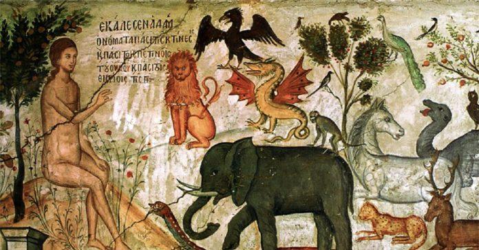 Adam pune nume animalelor în rai, înțelepciune