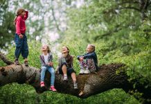 copii, natură, pădure, copaci, bucurie, veselie
