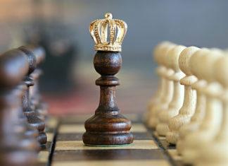 rege,șah,sport,minte,demnitate