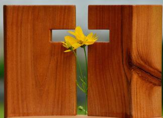 Sfânta Cruce, floare, lemn, primăvară, Postul Mare, Duminica a III-a din Post, 14 septembrie