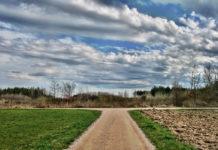 La răscruce de drumuri, alegere, pocăință, păcat